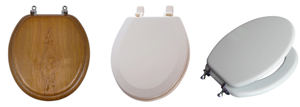 Sanitary Purposes Ideally The Function Of An Aquasource Toilet Seat